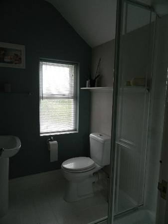 Bere House: South Room Bathroom