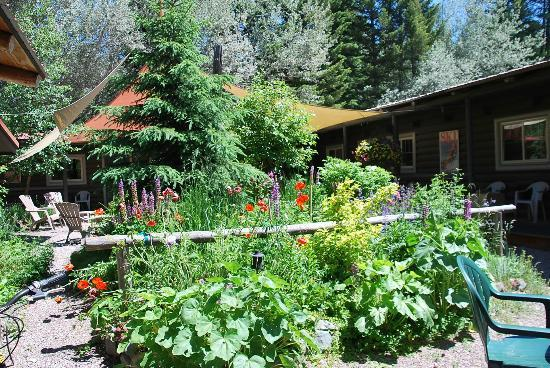 Laughing Horse Lodge: overview of the garden
