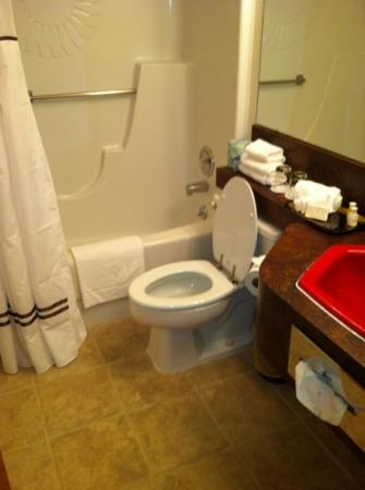 Dude Rancher Lodge: Bathroom and Shower