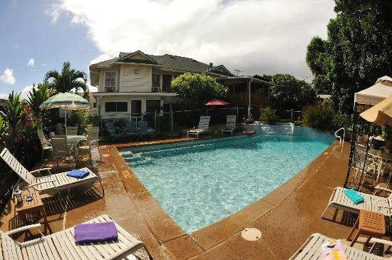 Wailuku Guesthouse : The saltwater pool