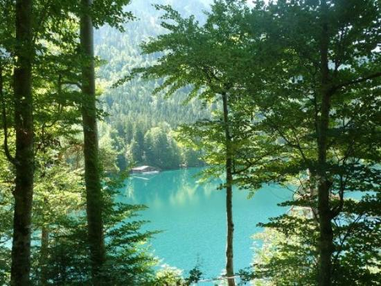 View of one of the lakes near Neuschwanstein and Hohenschwangau castles near Fussen, Germany