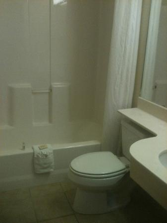 Microtel Inn & Suites by Wyndham Gulf Shores: Bathroom