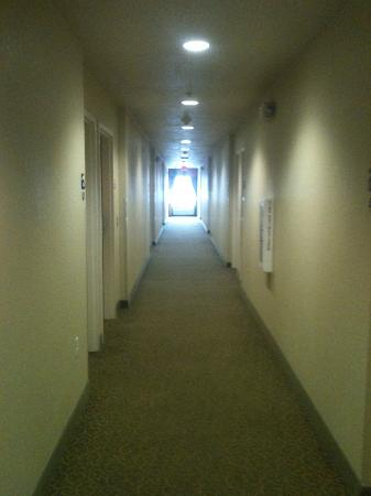 Microtel Inn & Suites by Wyndham Gulf Shores: Hallway
