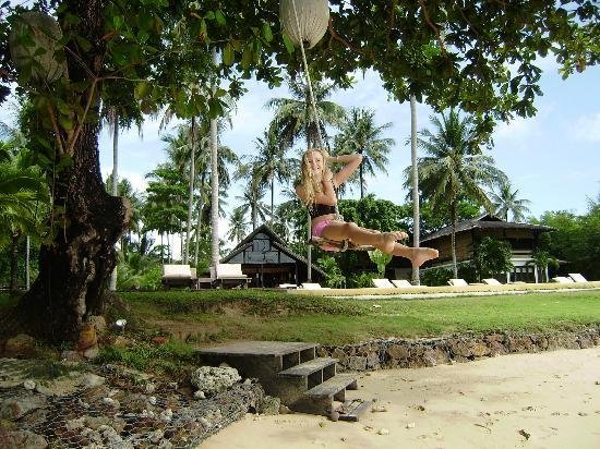 Koyao Island Resort: Swing over the beach