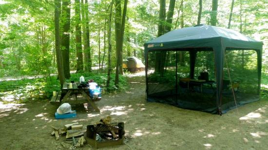 Virginia's Beach Campground: Camp Ground