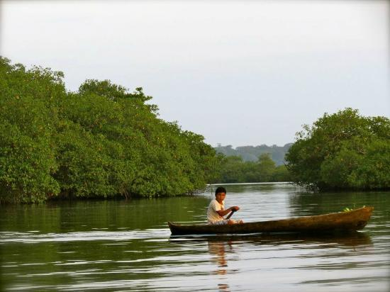 La Loma Jungle Lodge and Chocolate Farm: Traveling by canoe to Red Frog Beach
