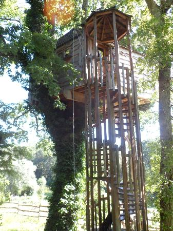 Monmarves, Frankrike: one of the treehouses
