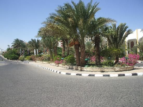 Arabia Azur Resort: Entrance