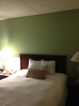 Hampton Inn & Suites Springfield - Southwest: room