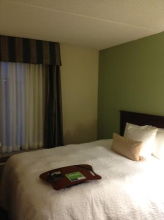 Hampton Inn & Suites Springfield - Southwest: room1