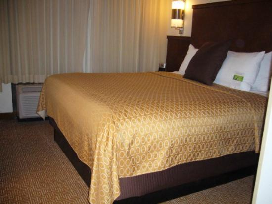 Hyatt Place Nashville/Franklin/Cool Springs: Loved the bed.
