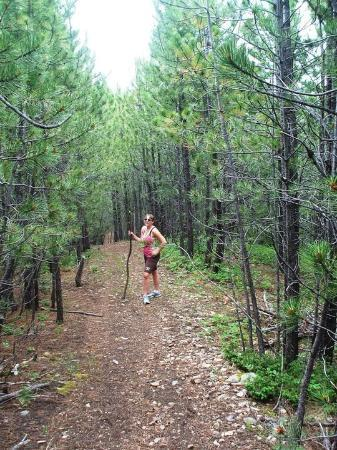 Deadwood Gulch Gaming Resort: hiking near Deadwood Gulch