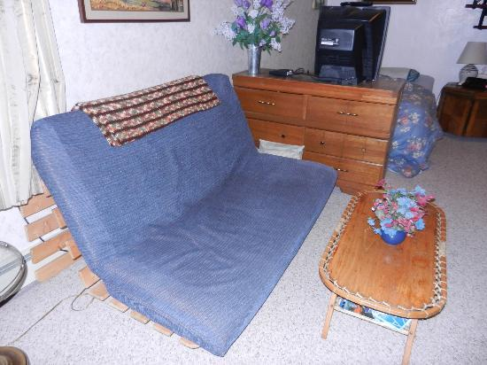 Anchorage Downtown B&B at Raspberry Meadows: Futon/couch