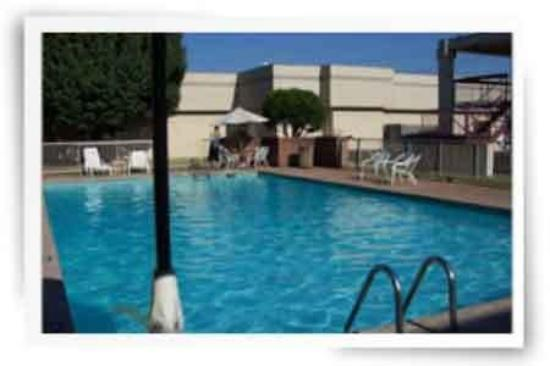 Park Place Inn: Web Pool