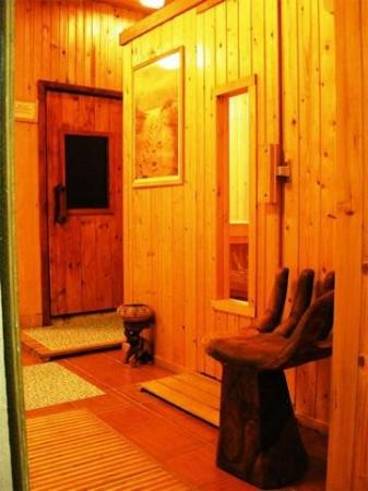 Rome Wellness House B&B: Sauna
