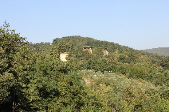Torraccia di Chiusi: Hotel buildings from nearby