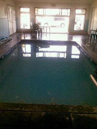 City Center Motel: Indoor heated pool!