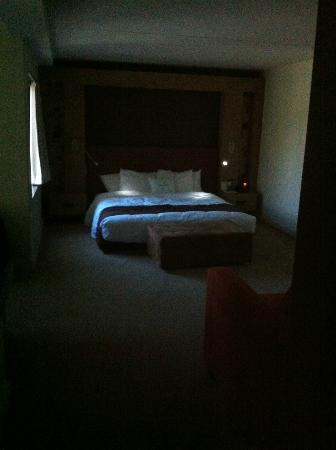 DoubleTree by Hilton Hotel Monrovia - Pasadena Area: This is how dark my room (cave??) was. Shot taken at mid day