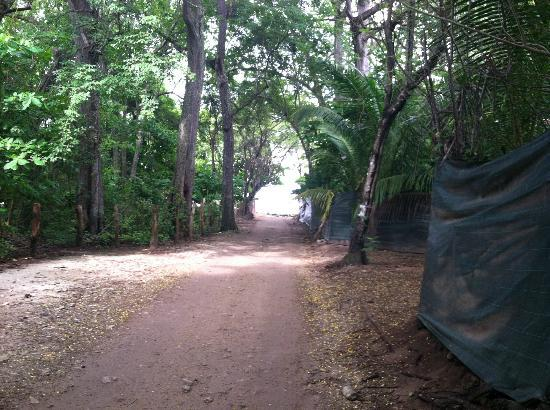 Manala Hotel: path to beach