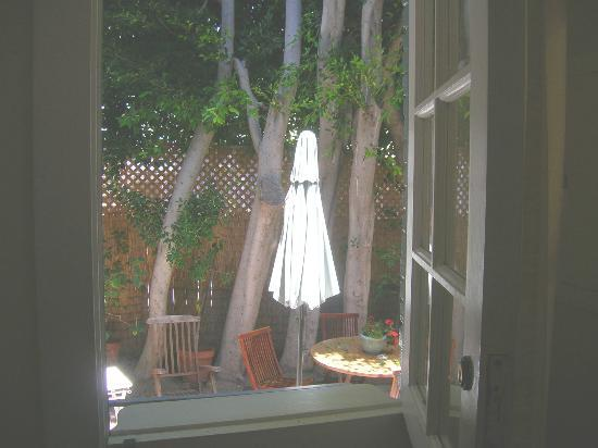 Venice Beach House: Looking out the door to back yard.