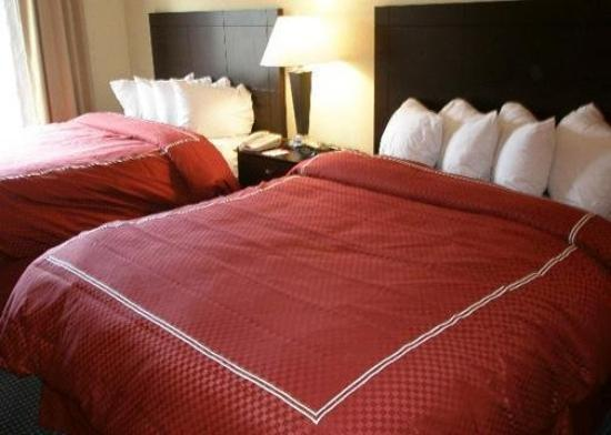 Comfort Suites East: Guest Room