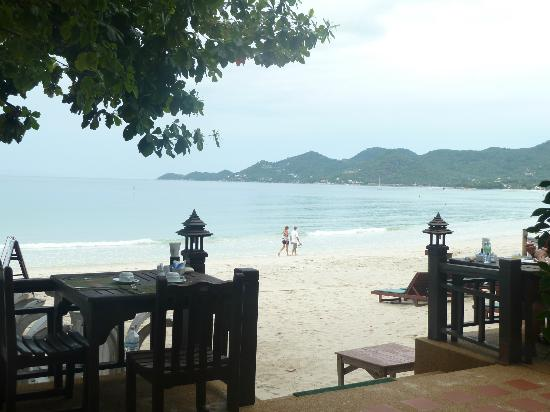 Baan Chaweng Beach Resort & Spa: Chaweng is THE best location on Koh Samui