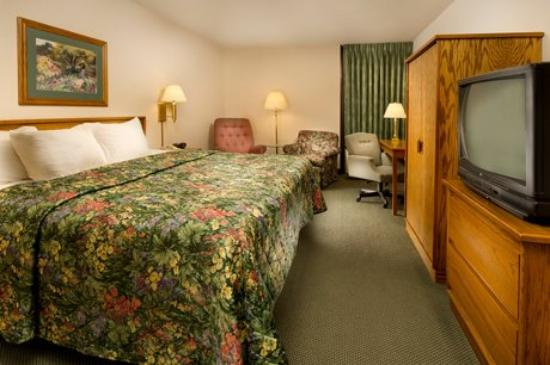 Pear Tree Inn Paducah: King Bed