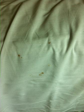 Ramada Limited &amp; Suites San Francisco Airport: Stain on sheets