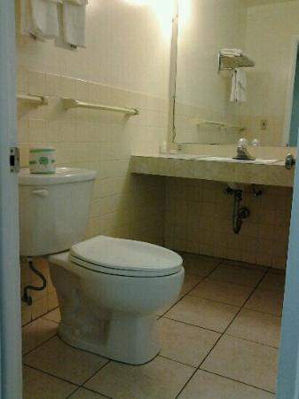 Econo Lodge Inn & Suites Denver : the same basic bathroom in double room and suite