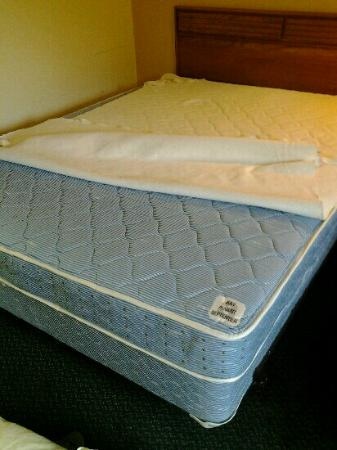 Econo Lodge Inn & Suites Denver : i don't think mattresses get much cheaper than this but at least they rotate every 3 mths!