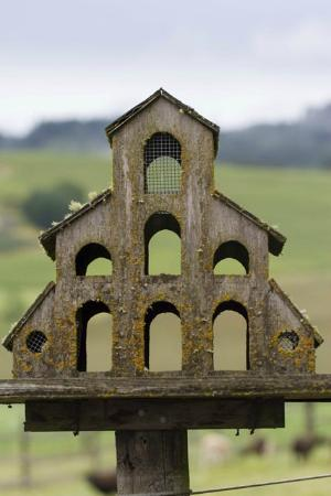 Abbey Road Farm B&B: Birdhouse
