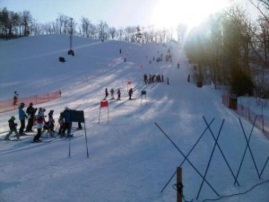 Batawa Ski Hill Reviews Quinte West Ontario Attractions Tripadvisor
