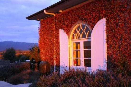 Yarra Valley Transfers - Wine Tours