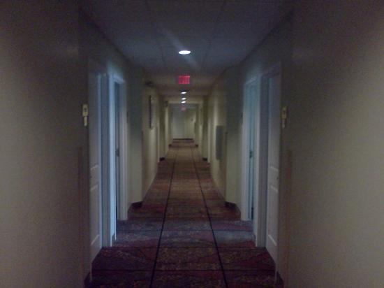 BEST WESTERN PLUS Newport News Inn & Suites: corridor