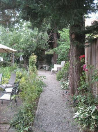 Garden at Albion Inn