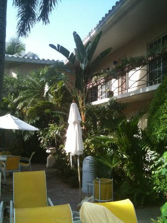 The Flamingo Inn Amongst the Flowers: inside courtyard
