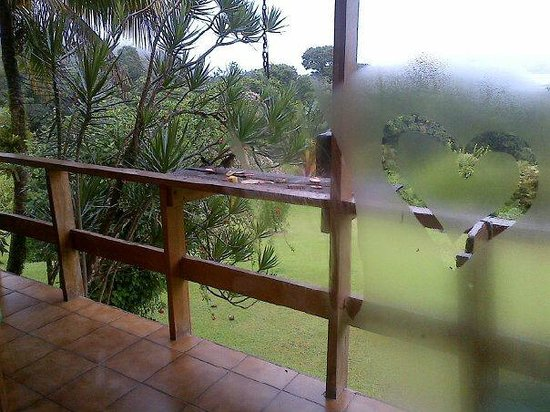 La Rana de Arenal: Birds coming to visit the Cafeteria balcony in the morning