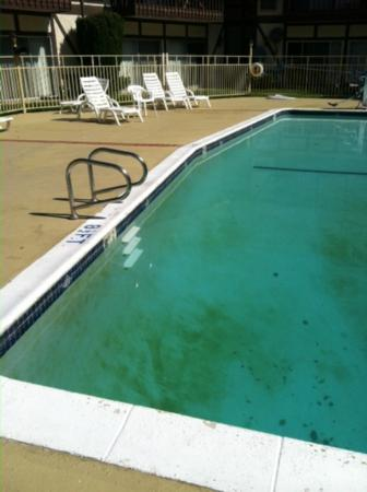 Days Inn Solvang / Buellton: The dirty pool