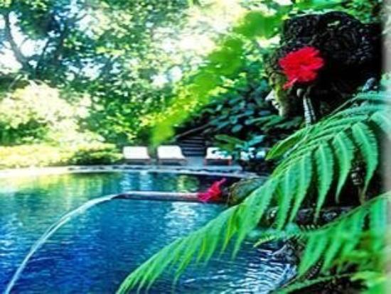 Photo of Hotel Tjampuhan & Spa Ubud