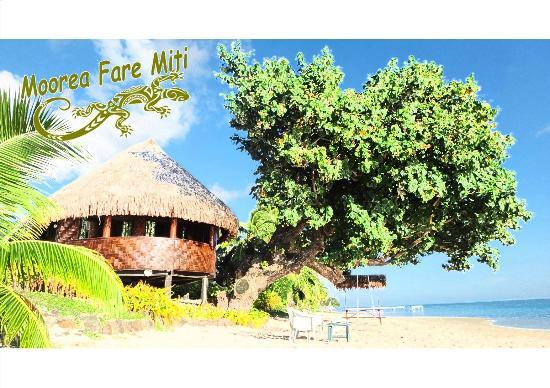Photo of Moorea Fare Miti Papetoai