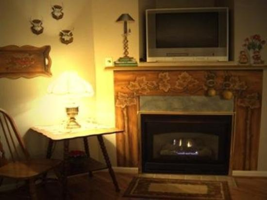 Black Forest B&amp;B and Luxury Cabins: Fireplace