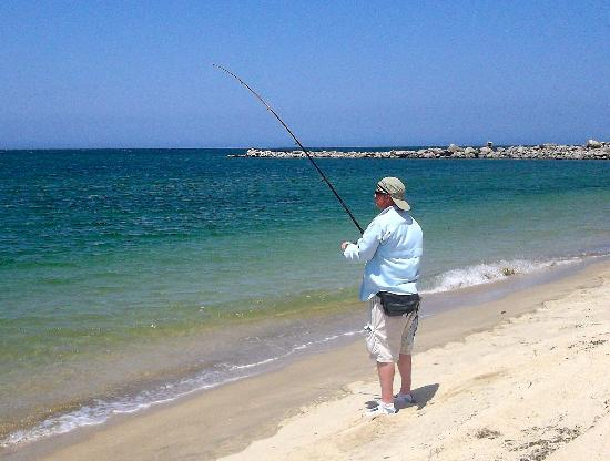 Lady fish on the fly picture of los barriles baja for Baja california fishing