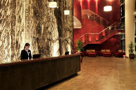 Hotel Dreams Araucania: Reception