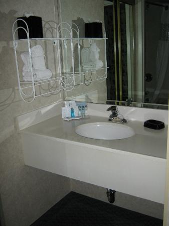 Hampton Inn & Suites By Hilton Calgary- University Northwest: bathroom sink area