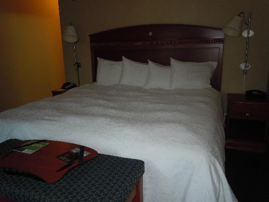 Hampton Inn & Suites Mystic: King size bed