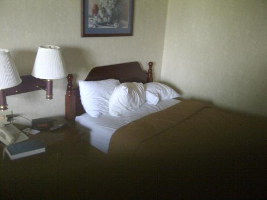 Comfort Inn West: who's been sleeping in my bed?