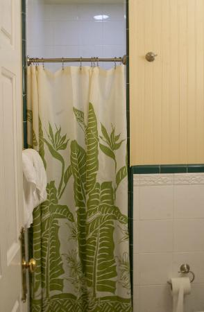 Plantation Inn: Bathroom/shower... very small, no tub.