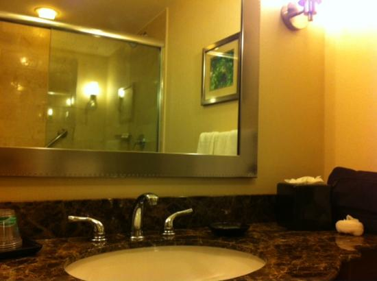 Viana Hotel and Spa: Superior King Bathroom