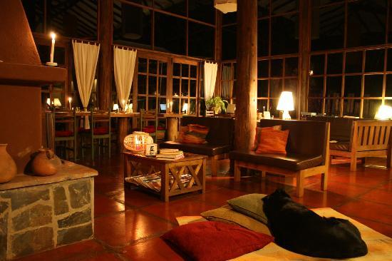 The Green House Peru: amazing common area