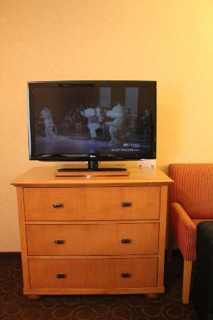 BEST WESTERN PLUS Pavilions : flatscreen tv